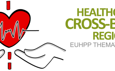 Watch our first Webinar of the Thematic Network on Healthcare in Cross-Border Regions