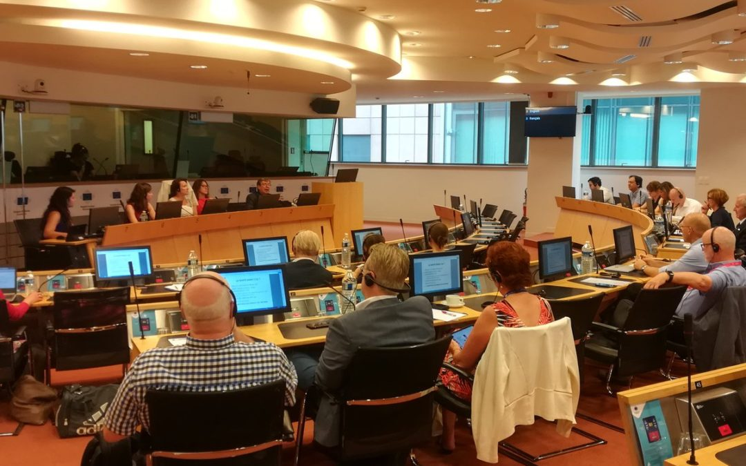 "CoR Interregional Group on Health and Wellbeing: ""Healthcare in Cross-Border Regions"""