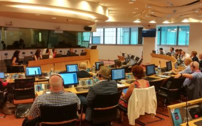 """CoR Interregional Group on Health and Wellbeing: """"Healthcare in Cross-Border Regions"""""""